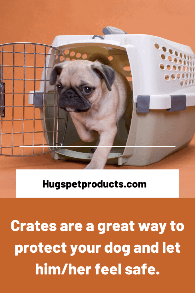 Dogs should feel safe and secure after neurering