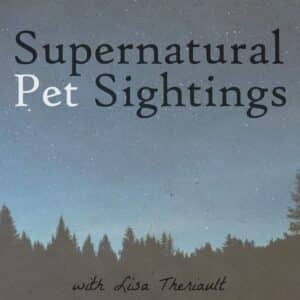 paranormal pet sightings happen more often than you think