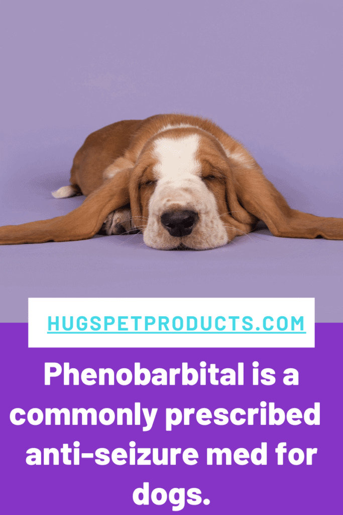 Anti-Seizure Medications for dogs can include phenobarbital.